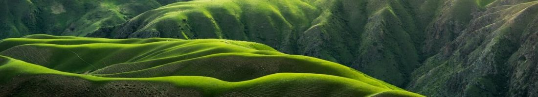 Green Hills by Qingbao Meng