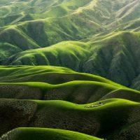 Green Hills by Qingbao Meng